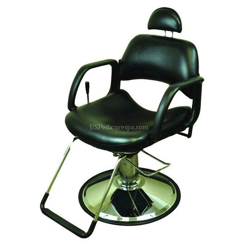 Picture of All Purpose Chair Miller TD39918