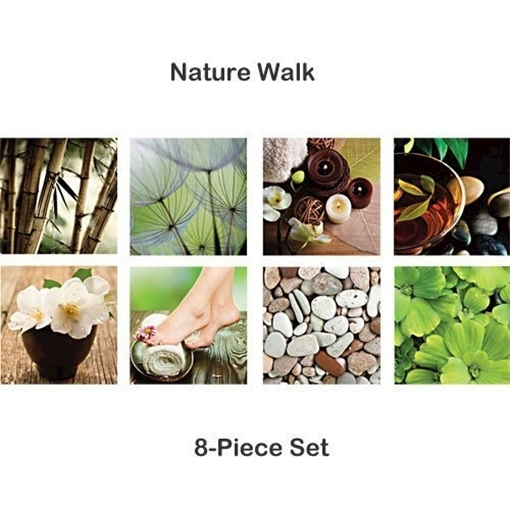 Picture of Picture Canvas Nature Walk