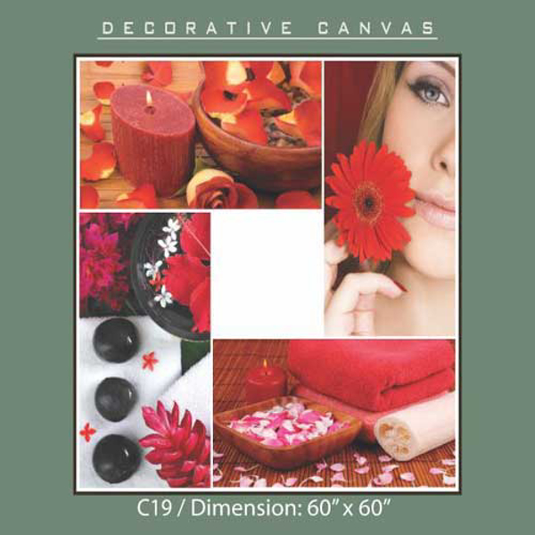 Picture of Decorative Canvas C19