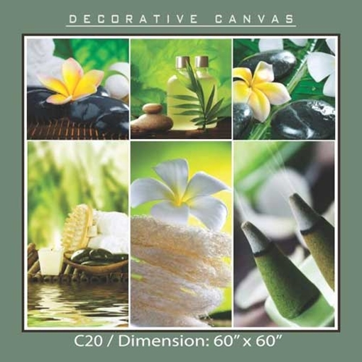 Picture of Decorative Canvas C20