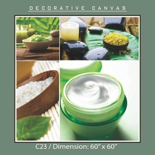 Picture of Decorative Canvas C23