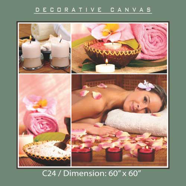 Picture of Decorative Canvas C24