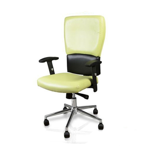 Picture of Euro Salon Guest Chair